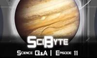 Science Q&A | SciByte 11