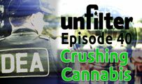 Crushing Cannabis | Unfilter 40