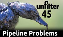 Pipeline Problems | Unfilter 45