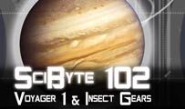 Voyager 1 & Insect Gears| SciByte 102
