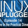Negative in the Practical Dimension | LUP 14