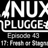 Mint 17: Fresh or Stagnant? | LUP 43